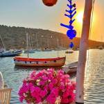 Karadeniz Yelpazesi Profile Picture