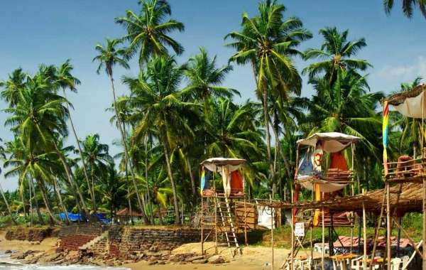 5 Updated Places to Visit in North Goa In 3 Days
