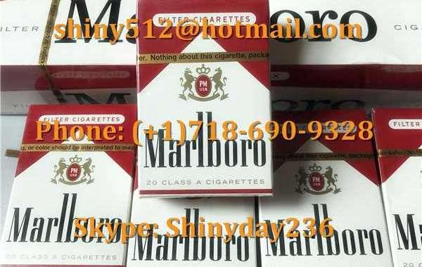 Newport Cigarettes Wholesale Cheap raise financial