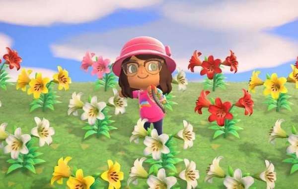 Buy Animal Crossing Items with fundamentally how to build